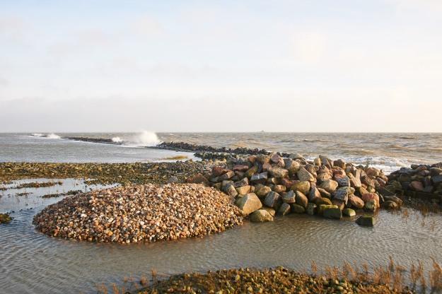 Eine Menge Wind bewegt die Nordsee, berührt die Ränder der Hallig, zerzaust das Haar und streichelt die Haut.