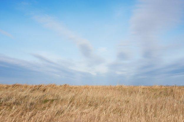 Die Februarfarben auf Gröde sind alle auf dieser Ansicht vereint: Langes goldenes Gras auf dem Vorjahr; ein pastellblauer Himmel an klaren Tagen und graue Wolken an nicht so klaren Tagen.