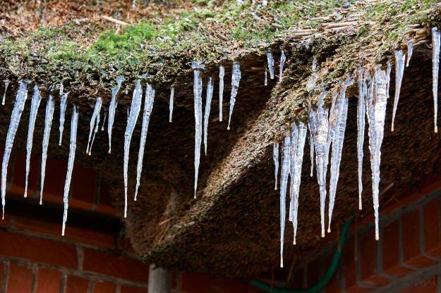 Frost, nur ein paar Tage.